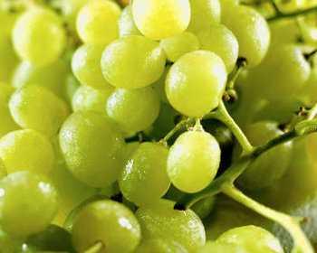 По мнению сторонников углеводных диет, фруктоза, содержащаяся в винограде, не вредна