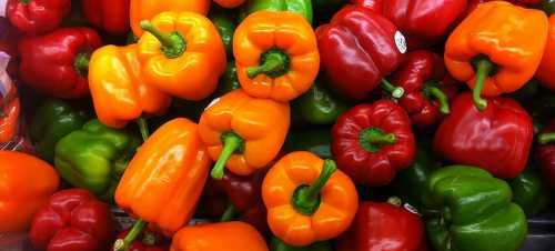 Красный перец: калорийность, польза и вред, кому