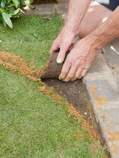 Лучше всего самостоятельно обработать участок на даче таким химическим средством осенью, а весной делать укладку газона