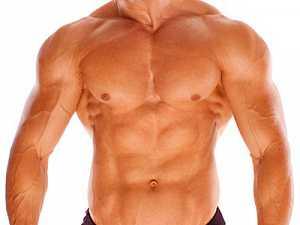 То есть, если вышеописанная мышца ослаблена, например, изза малоподвижного состояния и отсутствия физических нагрузок, то брюшная полость ее объем увеличивается, а вместе с ней растет и пузо