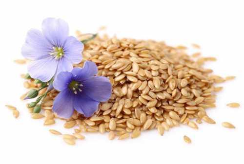Жую семя льна натощак и запиваю водой до завтрака Хочу рассказать подробнее