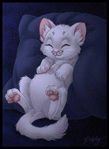 ТЕСТ: На какое животное ты похожа в постели
